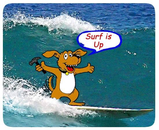 dog_surf