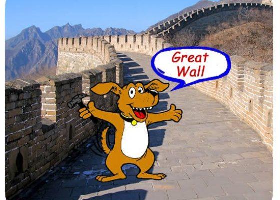 dog_wall-550×450