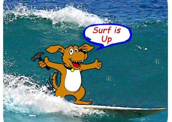 dog_surf-550×450