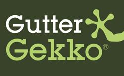 guttergekko logo, gutter installation